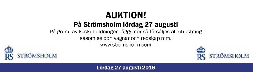 Auktion Strömsholm