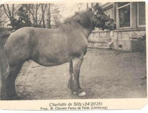 charlotte de silly 24 2025